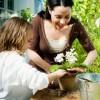 Activitati de gradinarit cu copiii